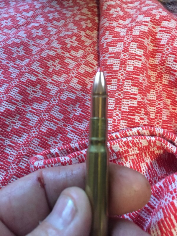 1DD8C20E-94D7-498B-93DE-730A8E64CDA9.jpeg