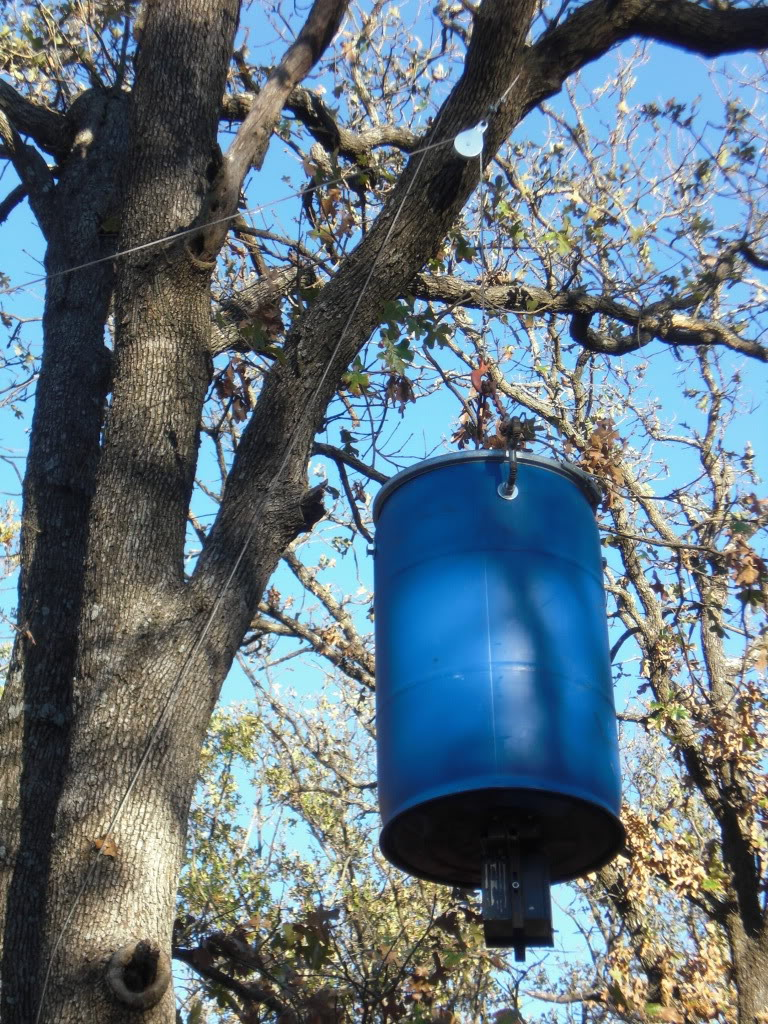 questions about deer feeders