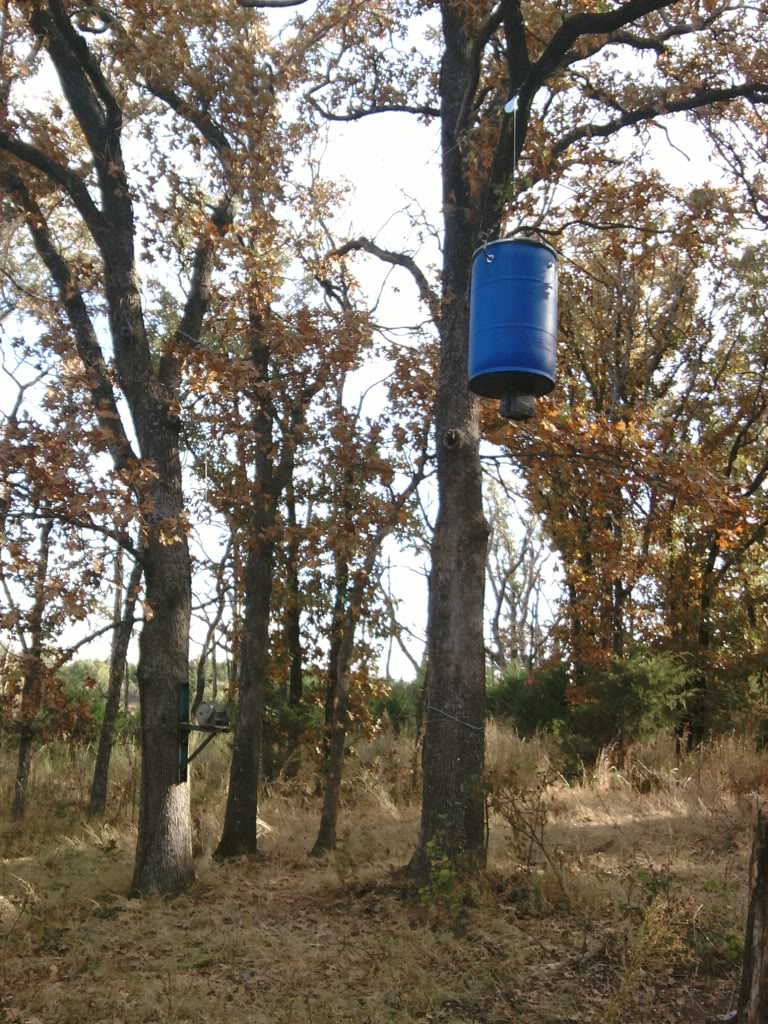 buck page feeder available d com ddebcam big feeders double best at gravity bushcamo deer order