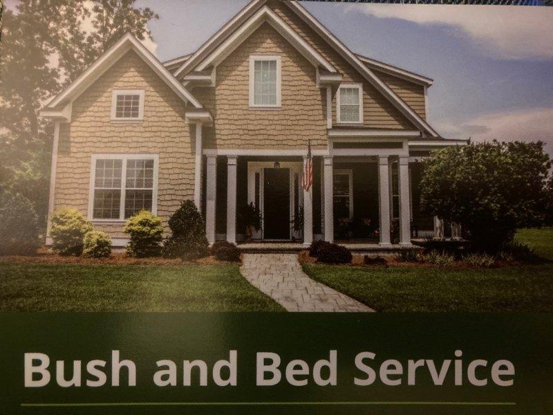 bush and bed.jpg