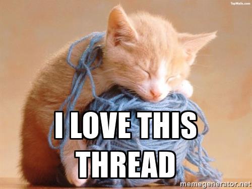 cat-string-i-love-this-thread.jpg
