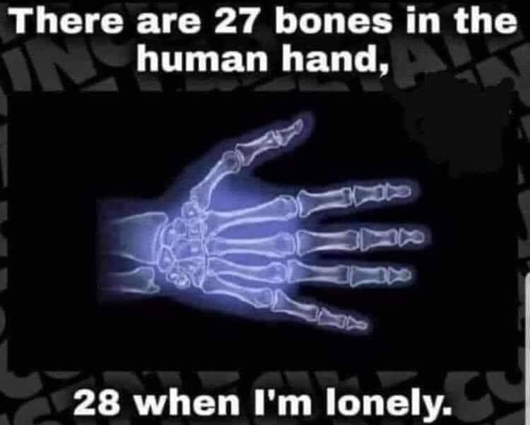 Human Hand bones.jpeg