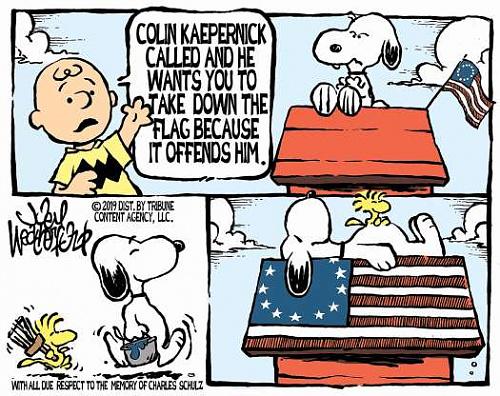 peanutsflag.jpg
