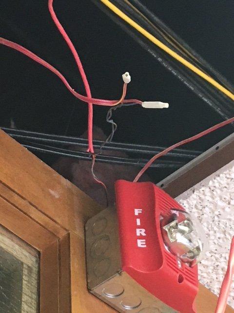 rats22_4 firewire.JPG